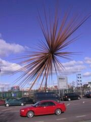 The B of the Bang - the tallest sculpture in the UK. Sadly dismantled for reasons of safety