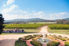 Found: The Perfect Place for a Vineyard   My Little Bird #virginiawine #dcweekend