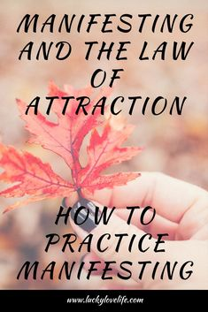 Would you like to learn how to manifest faster. Learn How to Manifest with these tips on how to practice.