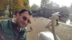 When the human meets a member of the animal kingdom from the avian world tucked away in the heart of a lake in London's Hyde Park. Easily approachable and candidly posing for a #selfie. - November 04 2016 at 01:29PM