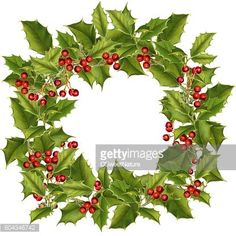 Find Holly Wreath Watercolor Christmas Wreath Holly stock images in HD and millions of other royalty-free stock photos, illustrations and vectors in the Shutterstock collection. Diy Christmas Cards, Christmas Printables, Christmas Leaves, Christmas Wreaths, Wreath Watercolor, Watercolor Christmas, Christmas Wreath Illustration, Pictures To Paint, Art Pictures
