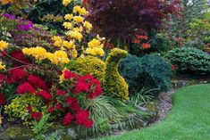 Beautiful Flowers Garden, Beautiful Gardens, Taxus Baccata, Garden Photos, Topiary, Spring 2014, Four Seasons, Places To Visit, Plants