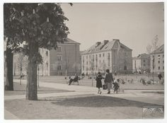 Houses project Franciszek Adamski, author: Wojciech Łoziński Miastoprojekt - Cracow, 1951, Nowa Huta (Cracow). In the foreground lawn with trees and a group of characters (mother and three children) walking on the sidewalk. In the background estate standing in three rows of houses covered with steep roofs.