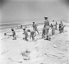 British troops digging defensive trenches near El Alamein, Egypt, 4 Jul 1942. (Imperial War Museum)