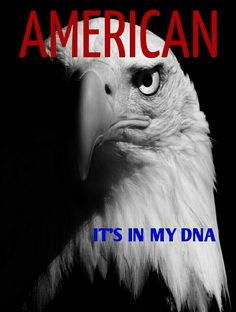 It's in the blood.  #American #Freedom #Constitution #eagle