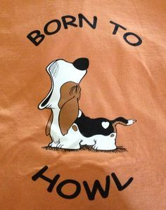 BASSET HOUNDS on Pinterest | Hound Dog, Bassett Hound and Love My Dog