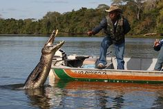 Pescaria no Pantanal Matogrossense