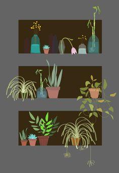 Window plants by Justina Blakeney