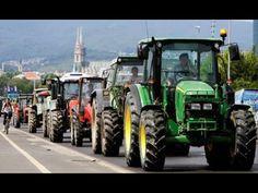 Αγροτικές Ειδήσεις: Μόνοι απέναντι στα θηρία οι αγρότες
