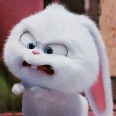 Pissed off 😠 Snowball Cute Bunny Cartoon, Cute Cartoon Pictures, Cartoon Pics, Cute Cartoon Wallpapers, Cartoon Rabbit, Rabbit Wallpaper, Bear Wallpaper, Cute Cartoon Characters, Cartoon Memes