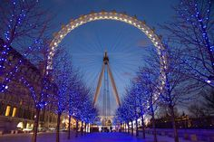 London Eye - niet grappig met hoogtevrees, wel spectaculair by night!