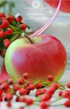 (-'_'-)  Apples