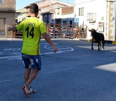 Santacara: Vacas Hermanos Marcen (7) Cows, Siblings, Parties