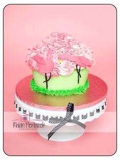 Cakes By Helzbach. Flamingo Cake, Pink Flamingos, Birthday Cake, Cakes, Drink, Desserts, Photography, Food, Tailgate Desserts