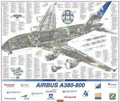 Airbus A380-800 cutaway drawing