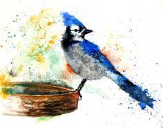 Blue Jay watercolor Giclee print by Ellen by EllenBrennemanStudio, $20.00