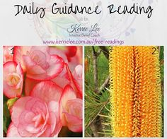 Free spiritual guidance reading for Tuesday 12 July. Choose an image that resonates and head on over to the website to read your message! ♡