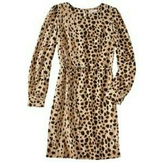 NWOT Merona Animal Print Dress Brand new and unworn Merona animal print dress, with tie at waist. This is definitely a head turner, but still business appropriate! The tags have been removed but the dress has never been worn. Merona Dresses