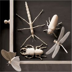 Carved bone insects.