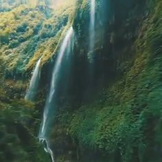 200 meters waterfall drop with rain like streams tumbling down the walls of a verdant, cylindrical canyon 💦🏞 East Java, Indonesia. Who would you want to explore this with? 😍 Beautiful Photos Of Nature, Beautiful Places To Travel, Nature Pictures, Amazing Nature, Beautiful Landscapes, Cool Places To Visit, Landscape Photography, Nature Photography, Virtual Travel