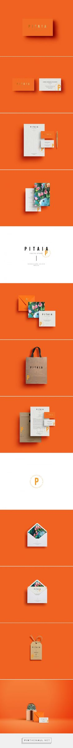 PITAIA Cacto Store Branding by Malarte Studio | Fivestar Branding Agency – Design and Branding Agency & Curated Inspiration Gallery  #design #designideas #designinspiration #branding #identity #identitydesign