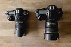 Review : Nikon D750