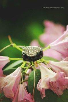 #ashleyscarbroughphotography #photography #knoxville #tennessee #wedding #summer #ring #flower
