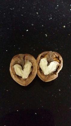 heart in the walnut