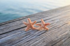 Real Sugar Starfish Aquamarine Earrings Inspired by MermaidChicLLC, $12.00