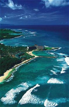 turtle bay! who would turn this place down?