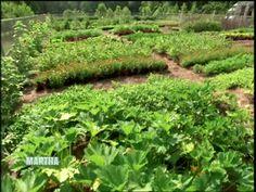 Tips for Vegetable Garden Maintenance