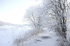 My beautiful home country Norway in her winter dress<3