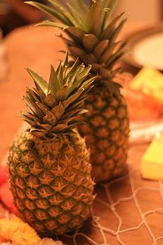 Game ideas for Hawaiian theme party