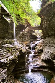 Watkins glen state park. Been here and its awesome!