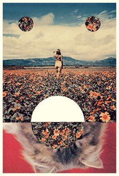 Digital Art / Mixed Media / Collage / Art / Cat / Flowers / Montage