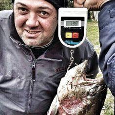 Laghi mezzaluna di Roma trota di quasi 8kg a spinning pesca fishing