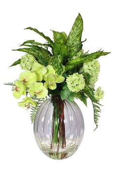 Green Orchid with mixed greens arrangement Green Orchid, Corporate Flowers, Silk Floral Arrangements, Silk Flowers, Orchids, Glass Vase, Bulb, Shapes, Beautiful