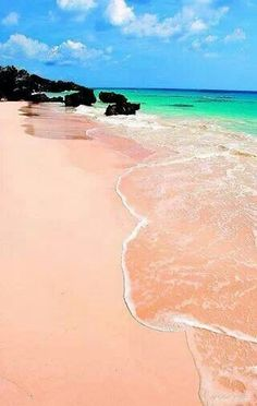 The pink sand beach in Bermuda