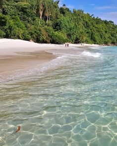 """37 curtidas, 1 comentários - Esse Mundo É Nosso (@essemundoenosso) no Instagram: """"Até parece Caribe, mas é a Praia do Dentista em Angra dos Reis 🌴☀️ Não deixe de incluir no seu…"""""""
