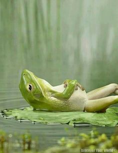 Relax,take it easy ;)