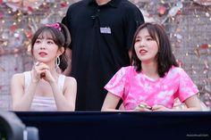 Irene and Wendy Red Velvet アイリン, Wendy Red Velvet, Red Velvet Seulgi, Kim Yerim, Red Rooms, Korean Bands, Peek A Boos, Girl Group, My Girl