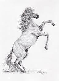 Znalezione obrazy dla zapytania konie rysunek ołówkiem