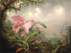 Martin Johnson Heade Orchid and Hummingbird painting for sale, this painting is available as handmade reproduction. Shop for Martin Johnson Heade Orchid and Hummingbird painting and frame at a discount of off. Art Floral, Martin Johnson Heade, Oil On Canvas, Canvas Art, Fotografia Tutorial, Hummingbird Painting, Hudson River School, Paintings For Sale, Oil Paintings
