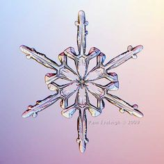 snowflake that looks like it was constructed by human hands., Fotografie van winter, ijs en natuur, ijskristallen en ijsbloemen, tuinieren, seizoenen,