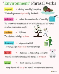 "Useful Phrasal Verbs Related to ""Environment"" & ""Health"""