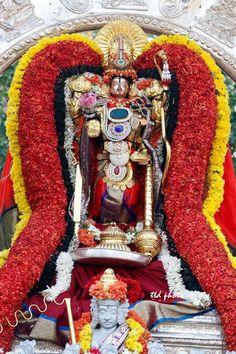 Sri-Kalyana-Venkateswara-Swamy-suryaprabha-vahanam
