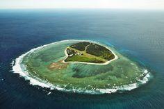 Lady Elliot Island: paradise on earth