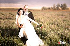 Entre un campo morado de alfalfa florecida