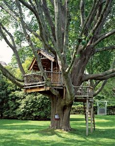 A big or small tree house bring lots of fun into backyard designs and create playful and youthful atmosphere. Tree house designs are wonderful backyard ideas that make adults and kids happy and joyful Future House, My House, Backyard Treehouse, Treehouse Ideas, Treehouses For Kids, Magic Treehouse, Backyard Playground, Tree House Plans, Diy Tree House