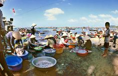 a seafood market in Ham Ninh Fish Village